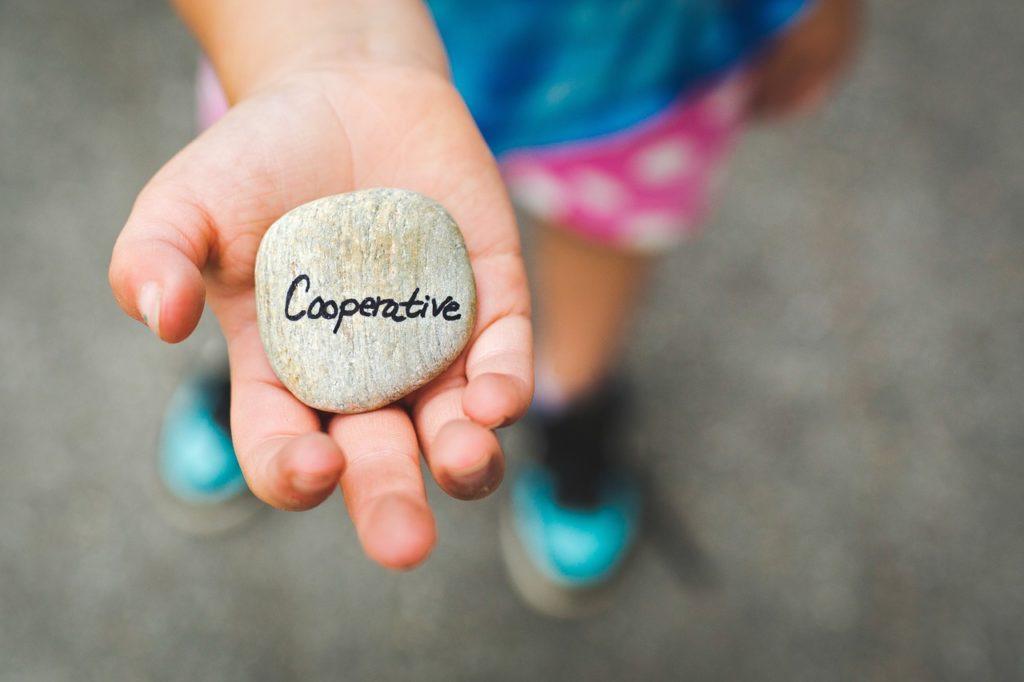 cooperative, stone, cooperation
