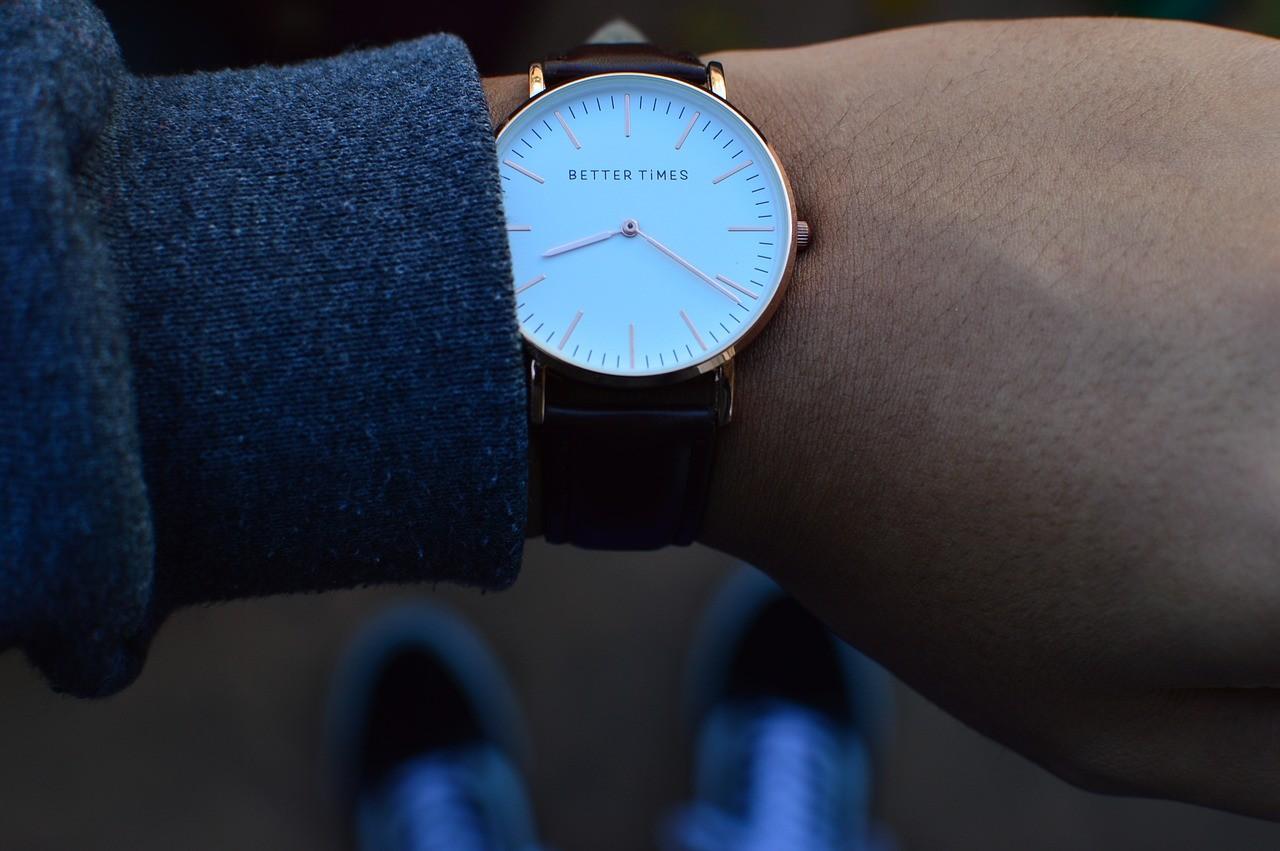 watch, wristwatch, wrist